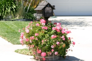 Wooden House Mailbox With Flower Barrel