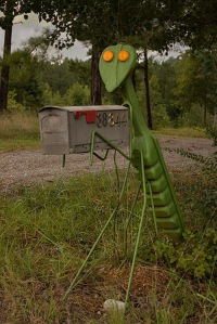 Praying Mantis Mailbox